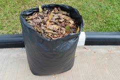 Las hojas adentro reciclan el bolso Imagen de archivo libre de regalías