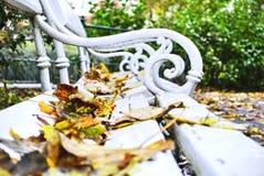 Las hojas caidas en un banco en otoño parquean Foto de archivo