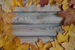 Las hojas de arce amarillas y anaranjadas secas están mintiendo en un escritorio de madera copie el espacio para su texto foto de archivo