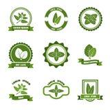 Las hojas de menta vector los logotipos, etiqueta, emblemas fijados stock de ilustración