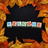 Las hojas de otoño enmarcaron schoolboard Fotos de archivo