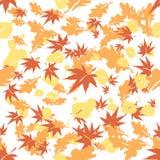 Las hojas de otoño Vector la ilustración Foto de archivo