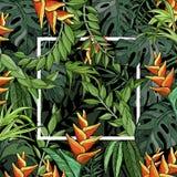Las hojas de palma y la ave del paraíso tropicales florecen, fondo con follaje de la selva y el marco blanco stock de ilustración