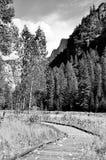 Las hojas de ruta (traveler) imagenes de archivo