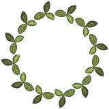 Las hojas del tr?bol enrruellan el ornamento floral Ilustraci?n del vector ilustración del vector