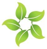 Las hojas ecológicas conectaron el logotipo Fotografía de archivo