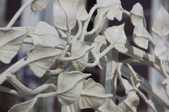 Las hojas en las ramas Imagen de archivo