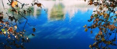 Las hojas enmarcan el agua azul Imagenes de archivo