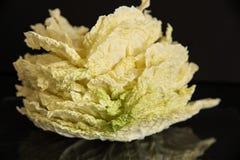 Las hojas frescas de la col del napa les gusta una flor en un fondo negro con descensos del agua Fotos de archivo libres de regalías