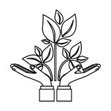 Las hojas piensan verde ilustración del vector