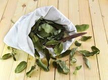 Las hojas secadas de la madreselva en la materia textil blanca empaquetan Fotografía de archivo