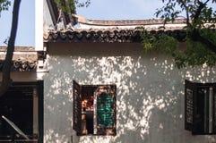 Las hojas y la rama del árbol sombrean abajo en la pared y la ventana Fotografía de archivo libre de regalías