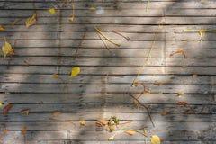 Las hojas y las flores secadas caidas en la estera de bambú con la sombra de la luz del sol foto de archivo