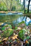 Las hojas y las rocas de otoño por los ríos afilan Imagenes de archivo