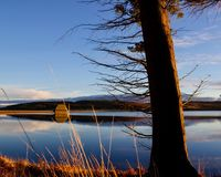 Las horas de oro en Kielder riegan, parque de Northumberland, Inglaterra Imagen de archivo