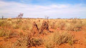 Las hormigas hicieron una colina grande de la termita imagen de archivo libre de regalías