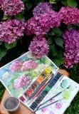 Las hortensias del dibujo, las pinturas del color de agua y las flores florecientes en un jardín Imágenes de archivo libres de regalías