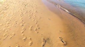 Las huellas en la arena, dejan su marca en vida almacen de video