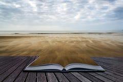 Las huellas en puesta del sol del verano de la playa ajardinan el imag conceptual del libro Imágenes de archivo libres de regalías