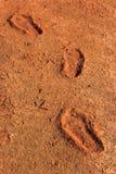 Las huellas se secaron en la tierra o en la tierra Fotos de archivo