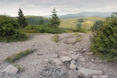 Las i góry obrazy stock