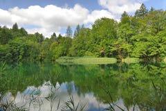 Las i jeziora Obraz Royalty Free