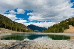 Las i jezioro Zdjęcia Stock