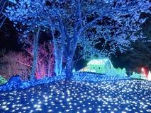 Las iluminaciones del invierno sueñan fotografía de archivo
