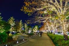 Las iluminaciones se encienden para arriba en Roppongi Hills Imágenes de archivo libres de regalías