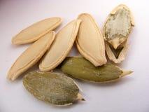 Las imágenes del calabacín nuts secado hermoso florecen conveniente para empaquetar Fotos de archivo