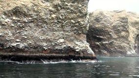 Las islas de Ballestas - Pisco - Perú almacen de video