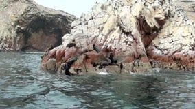 Las islas de Ballestas - Pisco - Perú metrajes