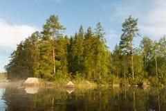 Las jeziorem przy rankiem zdjęcia royalty free