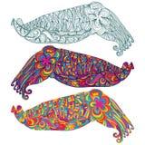 Las jibias camuflan la línea linda colorida Fotografía de archivo