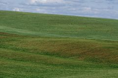 Las líneas de colinas verdes crean modelos hermosos como ondas Iluminado parcialmente por el sol Fondo hermoso fotos de archivo