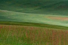 Las líneas de colinas verdes crean modelos hermosos como ondas Iluminado parcialmente por el sol Fondo hermoso imagenes de archivo