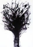 Las líneas generales vibrantes convergen en un lugar Corona abstracta del árbol Ramas de árbol en el viento imágenes de archivo libres de regalías