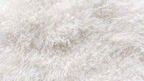 Las lanas suaves blancas texturizan el fondo, algodón inconsútil, lana natural de las ovejas de la luz, textura de la piel mullid fotografía de archivo