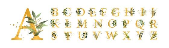 Las letras mayúsculas de la fuente floral de oro del alfabeto con las flores salen de salpicaduras del oro libre illustration