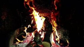 Las llamas del fuego real queman el movimiento con las ramas de la madera, chimenea en la cámara lenta, encendido