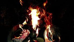 Las llamas del fuego real queman el movimiento con las ramas de la madera, chimenea en la cámara lenta, en negro
