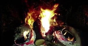 Las llamas del fuego real queman el movimiento con las ramas de la madera, chimenea, en negro