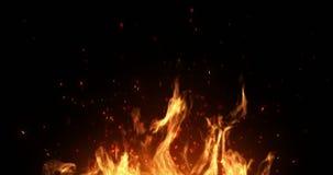 Las llamas realistas del fuego queman con el marco del movimiento de la subida de la ceniza en fondo negro, con stock de ilustración