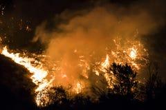 Las llamas y las ascuas anaranjadas brillantes queman en la noche durante el fuego de California foto de archivo