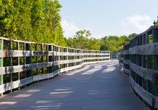 Las llaves de la Florida aumentaron la calzada fotografía de archivo libre de regalías