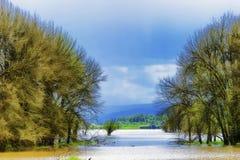 Las lluvias de primavera inundan los humedales ya saturados en Sauvie Isl Imagen de archivo