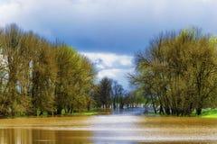Las lluvias de primavera inundan los humedales ya saturados en Sauvie Isl Foto de archivo