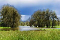 Las lluvias de primavera inundan los humedales ya saturados en Swauvie Isl Fotos de archivo libres de regalías