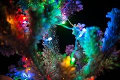 Las luces brillantes de un árbol de navidad natural cubrieron nieve. Macro Imagen de archivo libre de regalías