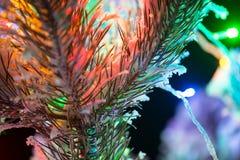 Las luces brillantes de un árbol de navidad natural cubrieron nieve. Macro Fotografía de archivo libre de regalías